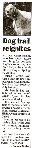 The Queensland Times, Ipswich, Finding Beau, Stolen Dog