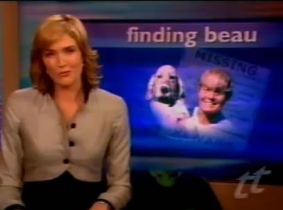 today tonight channel 7 national television, finding beau, stolen dog, english setter